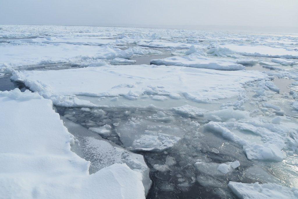 一面の流氷