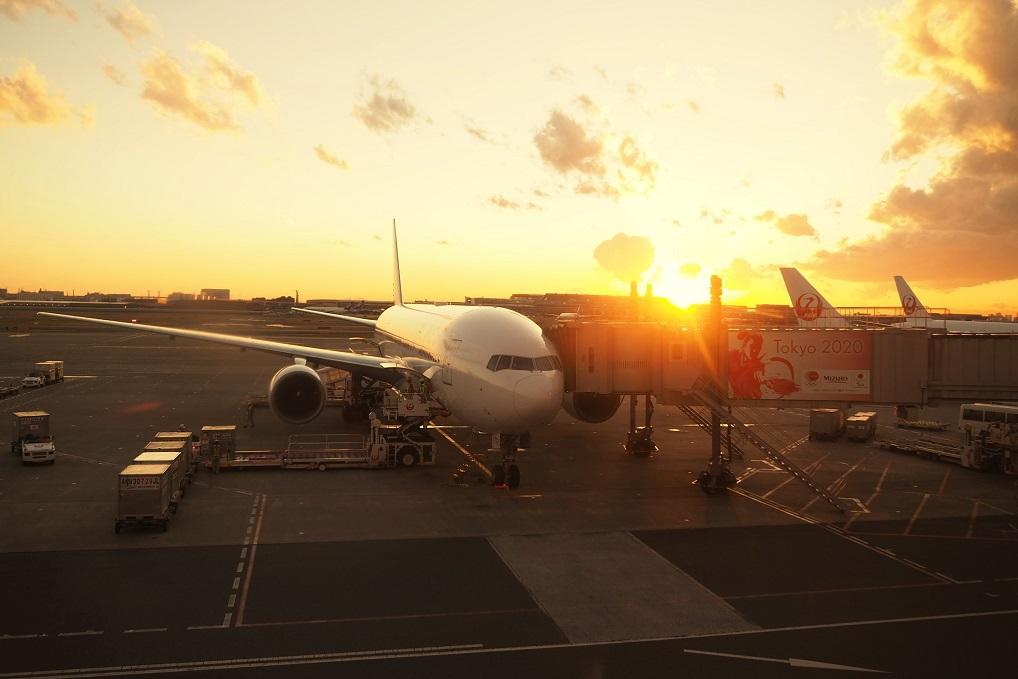 サクララウンジから見る夕焼けと飛行機