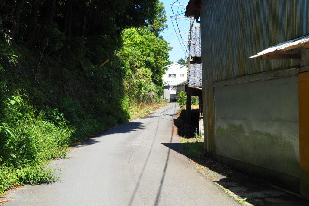 薩埵峠までの狭い道
