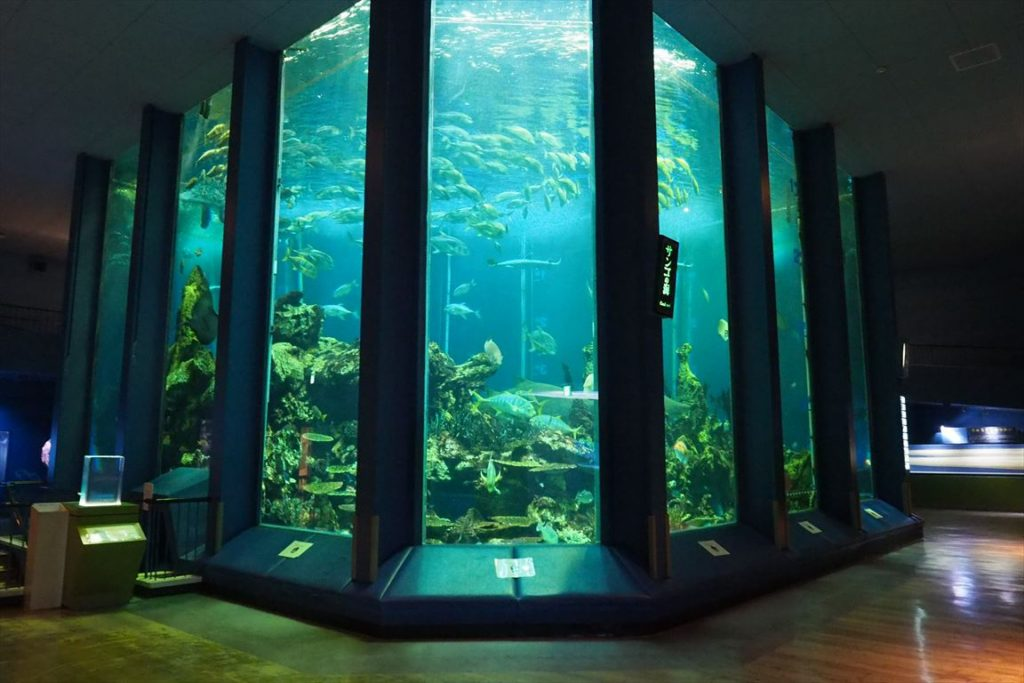 海洋科学博物館海洋水槽