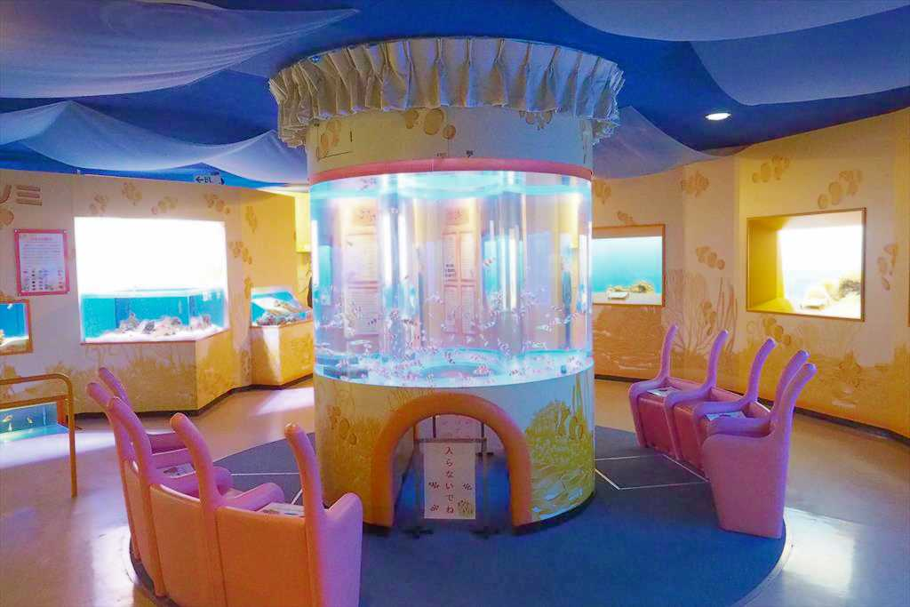 クマノミ水族館